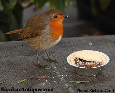 Robin and mince pie