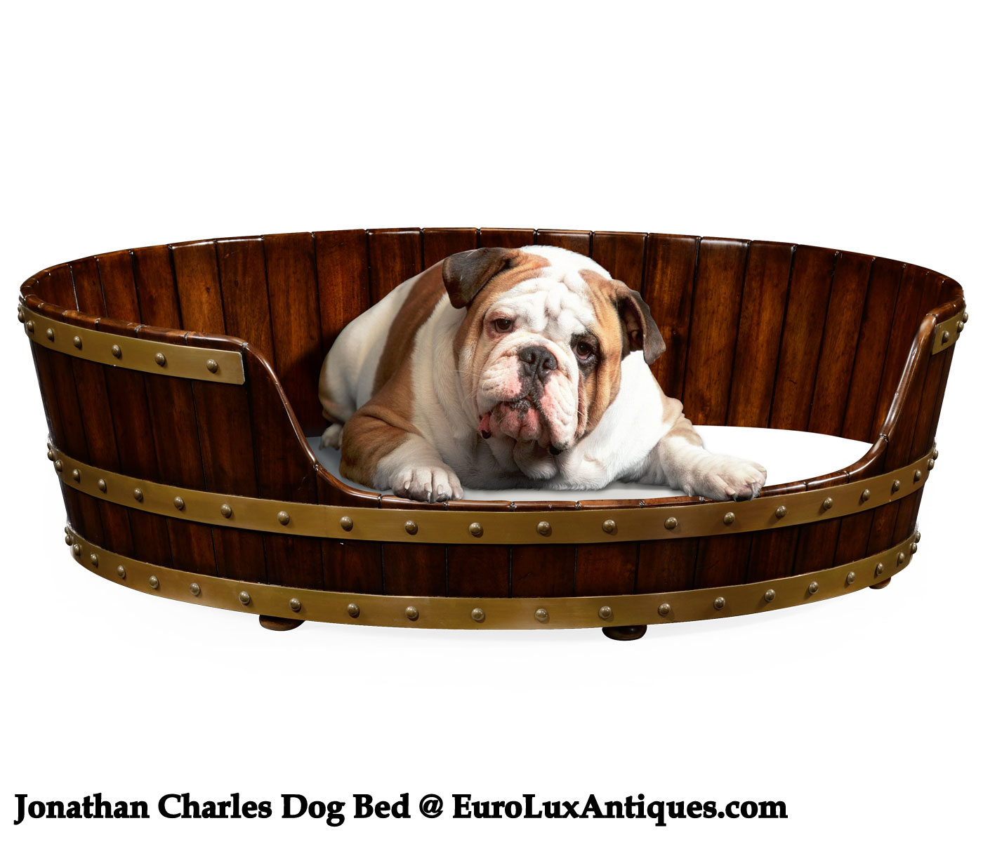 Jonathan Charles dog bed
