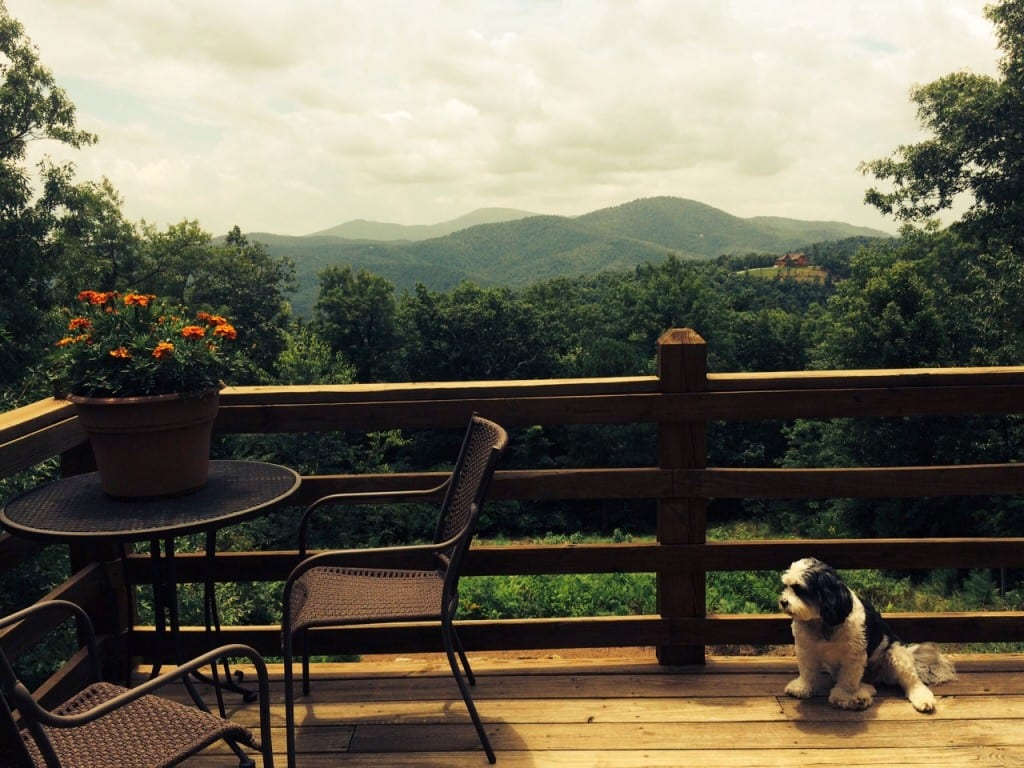 Black Mountain Porch