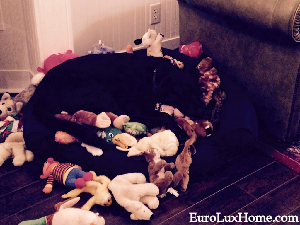 Jake's dog bed of toys