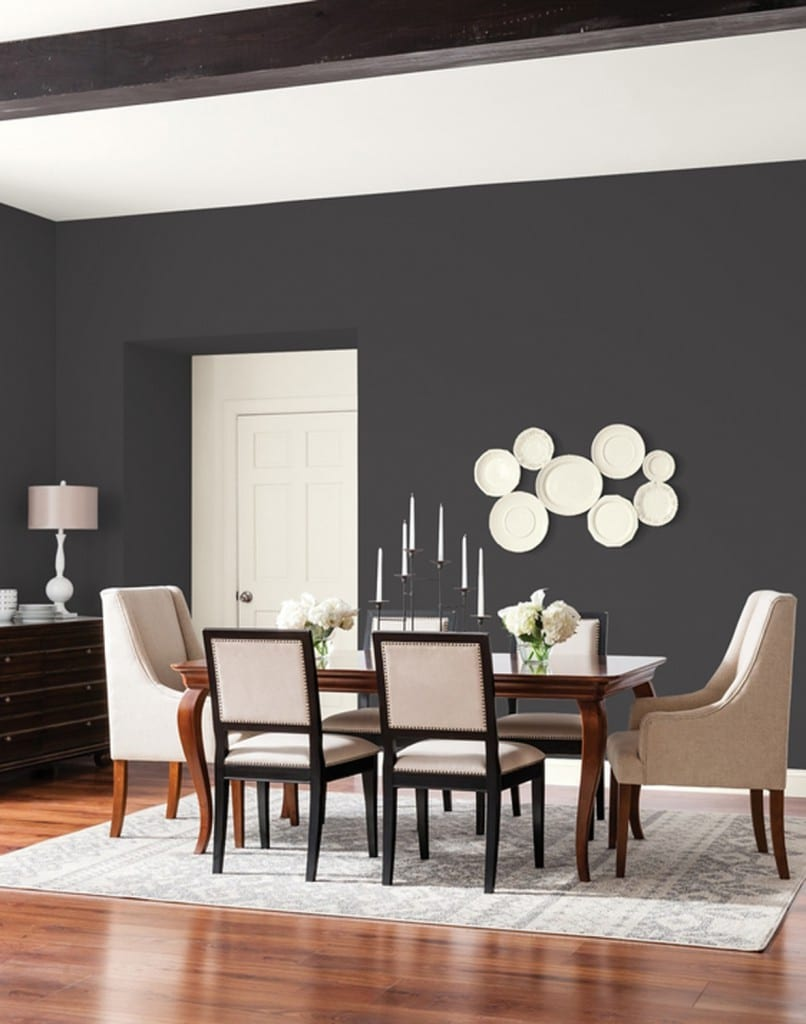 Deep Onyx Color of the Year